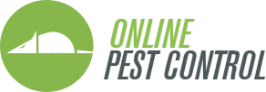 Pest Control Questions and Answers from Experts