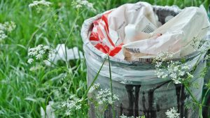 Keep garbage sites clean and cans covered.