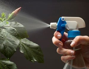 Soaps can be made into sprays.