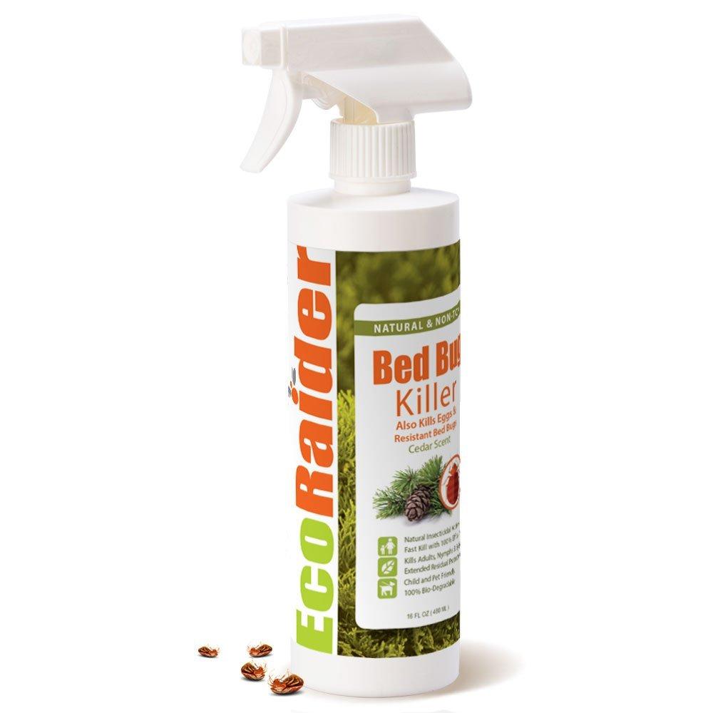 Bed Bug Spray Home Depot >> 6 Pesticides Used in Effective Bedbug Control