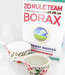 Borax Ant Killer