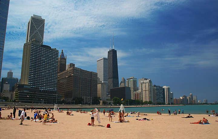 Chicago, Illinois- Online Pest Control