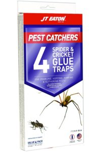 Glue traps - how to get rid of house crickets